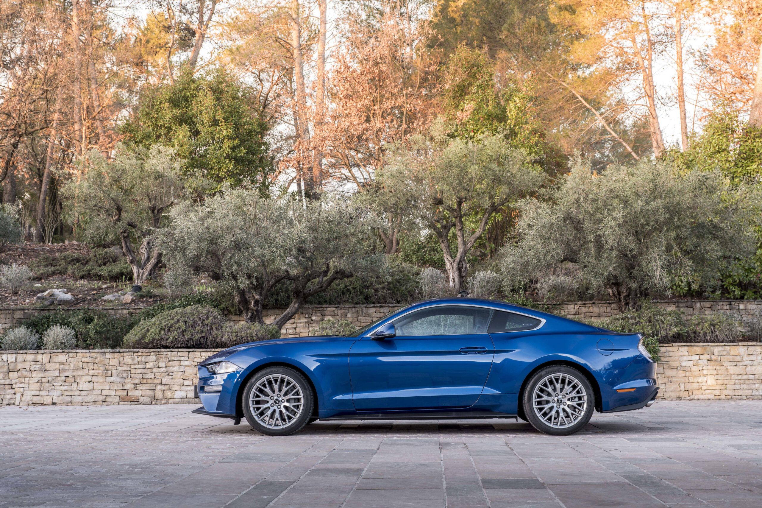 Ford Mustang Laterale
